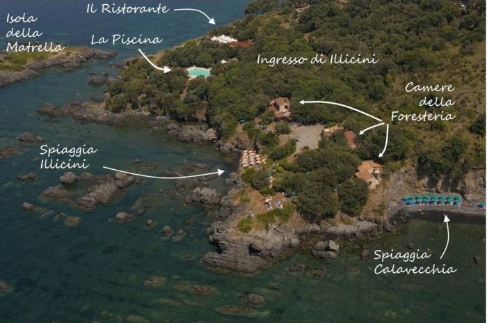 cartina italiano nuova