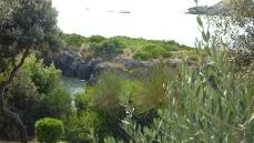 La vegetazione del parco