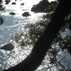 Il mare visto dal parco