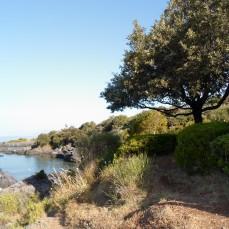 Parco alla Punta Illicini